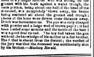 CHRIS SAUNDERS 2 The Maitland Mercury & Hunter River General Advertiser (NSW 1843 - 1893), Thursday 12 January 1882, 2