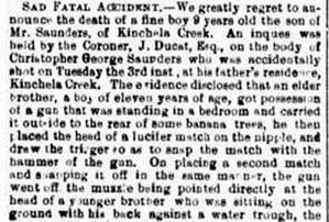 CHRIS SAUNDERS The Maitland Mercury & Hunter River General Advertiser (NSW  1843 - 1893), Thursday 12 January 1882, 1